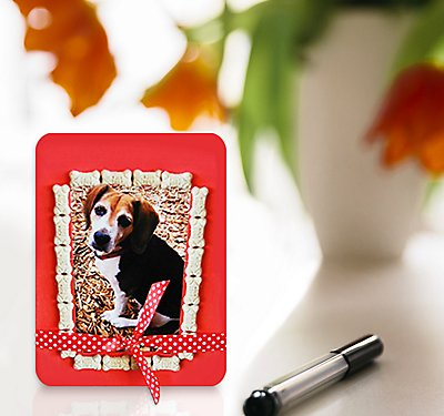 Valentine's Day Dog Treat Frame