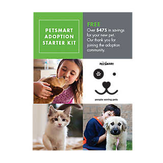 essays on petsmart 40 reviews of petsmart we love this petsmart and so does our english bulldog this is where we book him for grooming and this is where he enjoys playtime during doggie daycare i just can't say enough nice things about the staff at the.