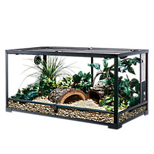Save on select terrariums for the curious ones on your list!