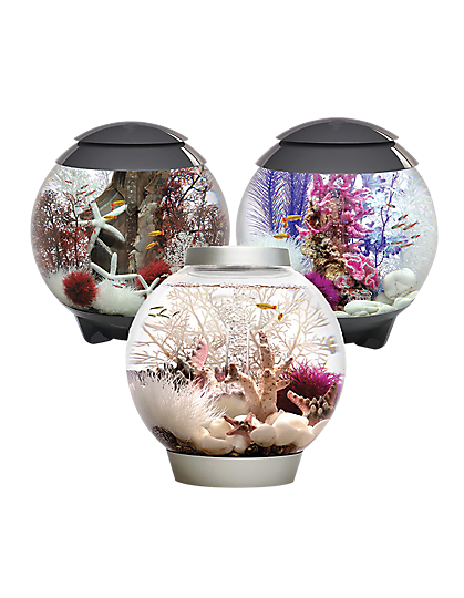 3 biOrb fish tanks