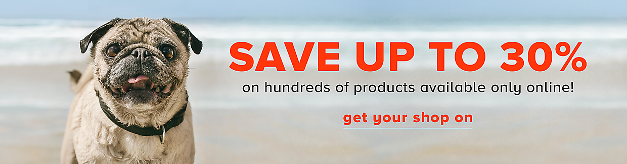 Save up to 30% on hundreds of online only products