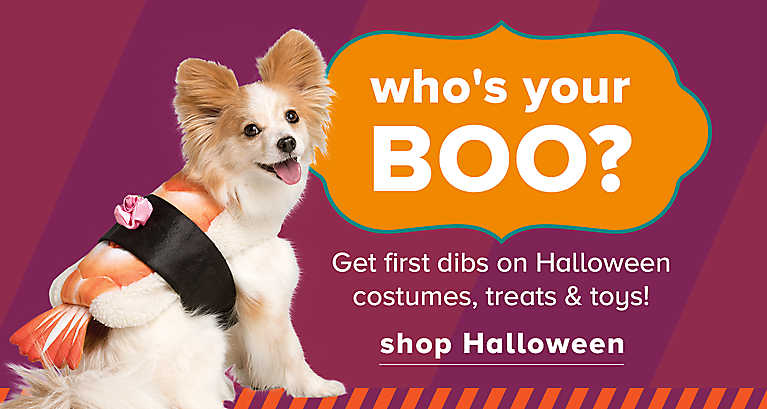Shop Halloween costumes, treats & toys!