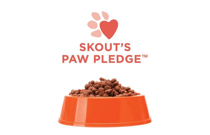 skout 39 s honor pet cleaning products pet stain odor eliminator petsmart. Black Bedroom Furniture Sets. Home Design Ideas