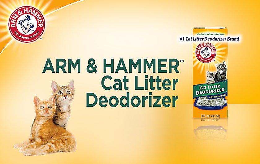 ARM & HAMMER™ Cat Litter Deodorizer
