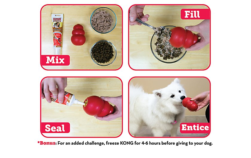 How to Stuff a KONG