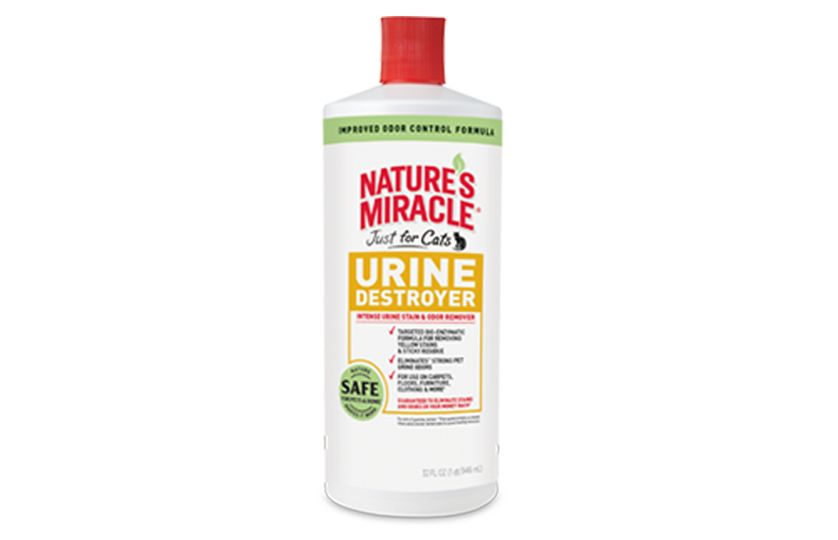 remove urine messes