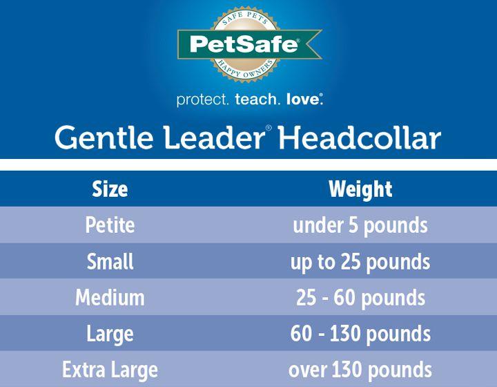 PetSafe® Gentle Leader® Training Dog Headcollar   dog ...