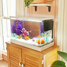 Shop_Aquariums_Jodi
