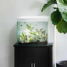 Valentina_Aquariums