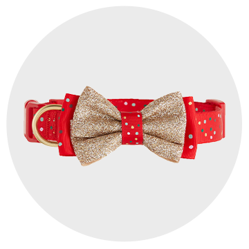 shop holiday collars and leashes