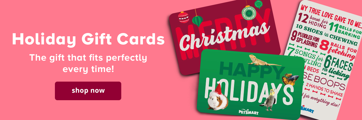 Holiday gift cards, shop now >