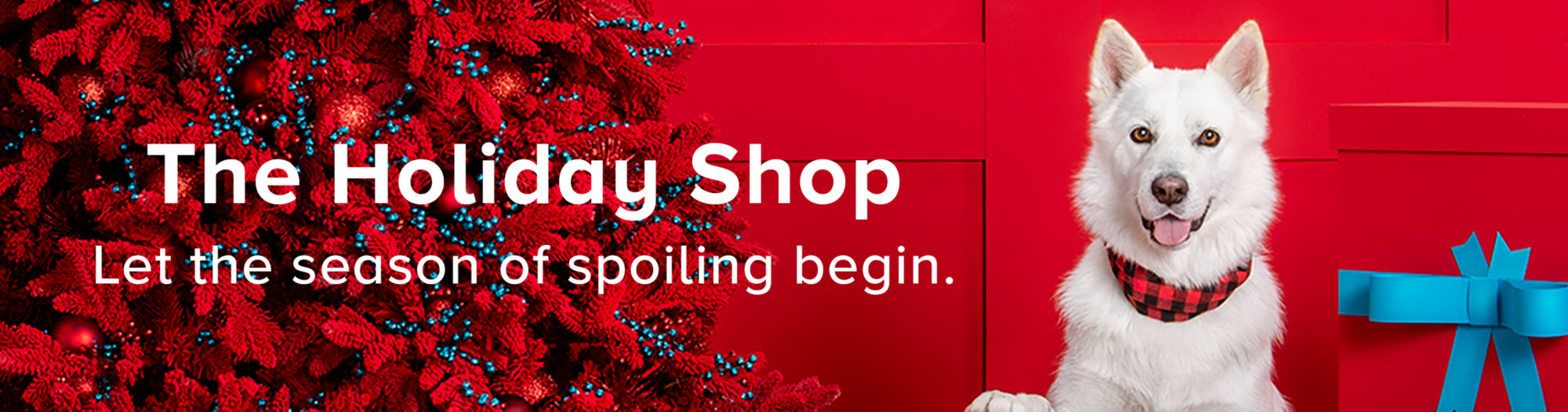 Holiday Shop Banner