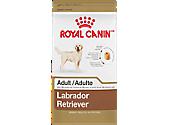 Labrador Retriever Adult Dry Food