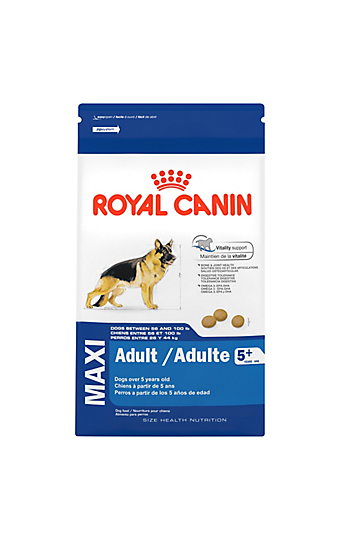 the senior dog life stage royal canin canada. Black Bedroom Furniture Sets. Home Design Ideas