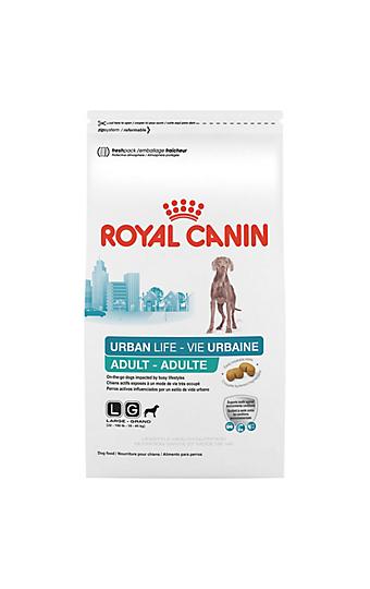 medium adult dry dog food royal canin size health nutrition. Black Bedroom Furniture Sets. Home Design Ideas