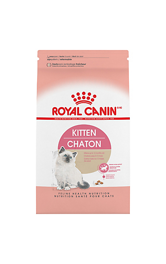 Kitten Food Feeding For Growth Development Royal Canin