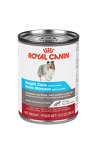 My Dog Doesn T Like Dry Or Canned Dog Food