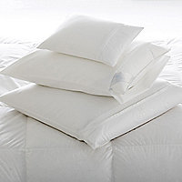 Pillow & Featherbed Protectors