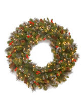 National Tree Company 30 Inch Crestwood Spruce Wreath WIth LED Lights