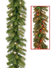 National Tree Company 9 ft. Norwood Fir Garland With Dual Color Lights
