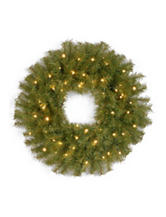 National Tree Company 24 Inch Norwood Fir Wreath With White LED Lights