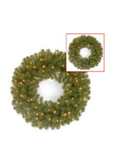 National Tree Company 24 Inch North Valley Spruce Wreath With Dual Core Led Lights