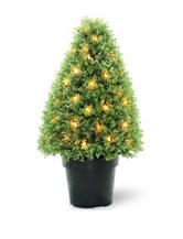 National Tree Company 30 Inch Pre-Lit Boxwood Tree with Pot
