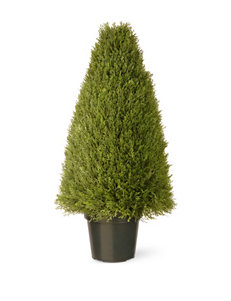 National Tree Company 36 Inch Upright Juniper with Pot