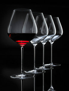 Wine Enthusiast 4-pc. Fusion Air Pinot Noir Wine Glasses