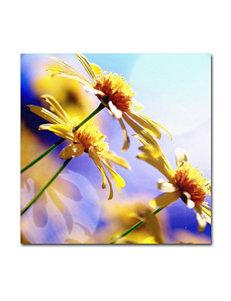 Sunny Days Canvas Art