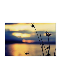 Sunset Thoughts Canvas Art
