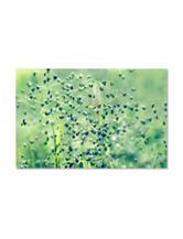 Spring Notes Canvas Art