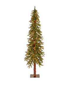 National Tree Company 6-ft. Hickory Cedar Tree with Clear Lights
