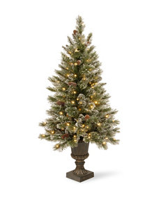National Tree Company 4-ft. Glittery Bristle Entrance Tree with Clear Lights