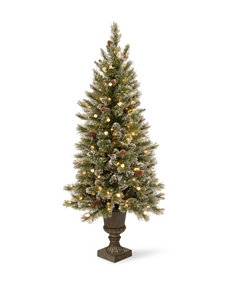 National Tree Company 4-ft. Glittery Bristle Entrance Tree with Warm White LED Lights