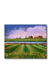 Courtside Market Field of Color Canvas Wall Art