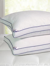 Elle 2-pk. 1000 Thread Count Swiss Dot Pillow