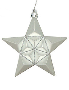 Christmas Central 12-pc. Matte Silver Splendor Glittered Star Shatterproof Christmas Ornaments