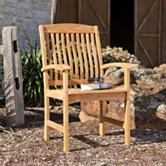 Southern Enterprises 2-pc. Waverly Teak Arm Chair