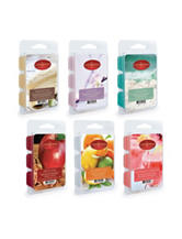Candle Warmers 6-pk. Variety Best Sellers 2-oz. Wax Melts