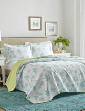 Laura Ashley 3-pc. Cape Coral Quilt Set