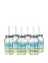 Formation 6-pk. Southern Pride Mason Jars