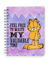 TFI 2017 Academic Year  Garfield Spiral Engagement Planner