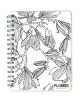 TFI 2017 Academic Year Color Me Plans Spiral Engagement Planner