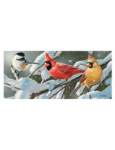 Evergreen Birds in Heavy Snowfall Sassafras Mat