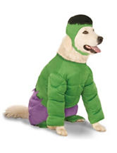 2-pc. Hulk Pet Costume