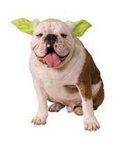 Yoda Headpiece Dog Costume