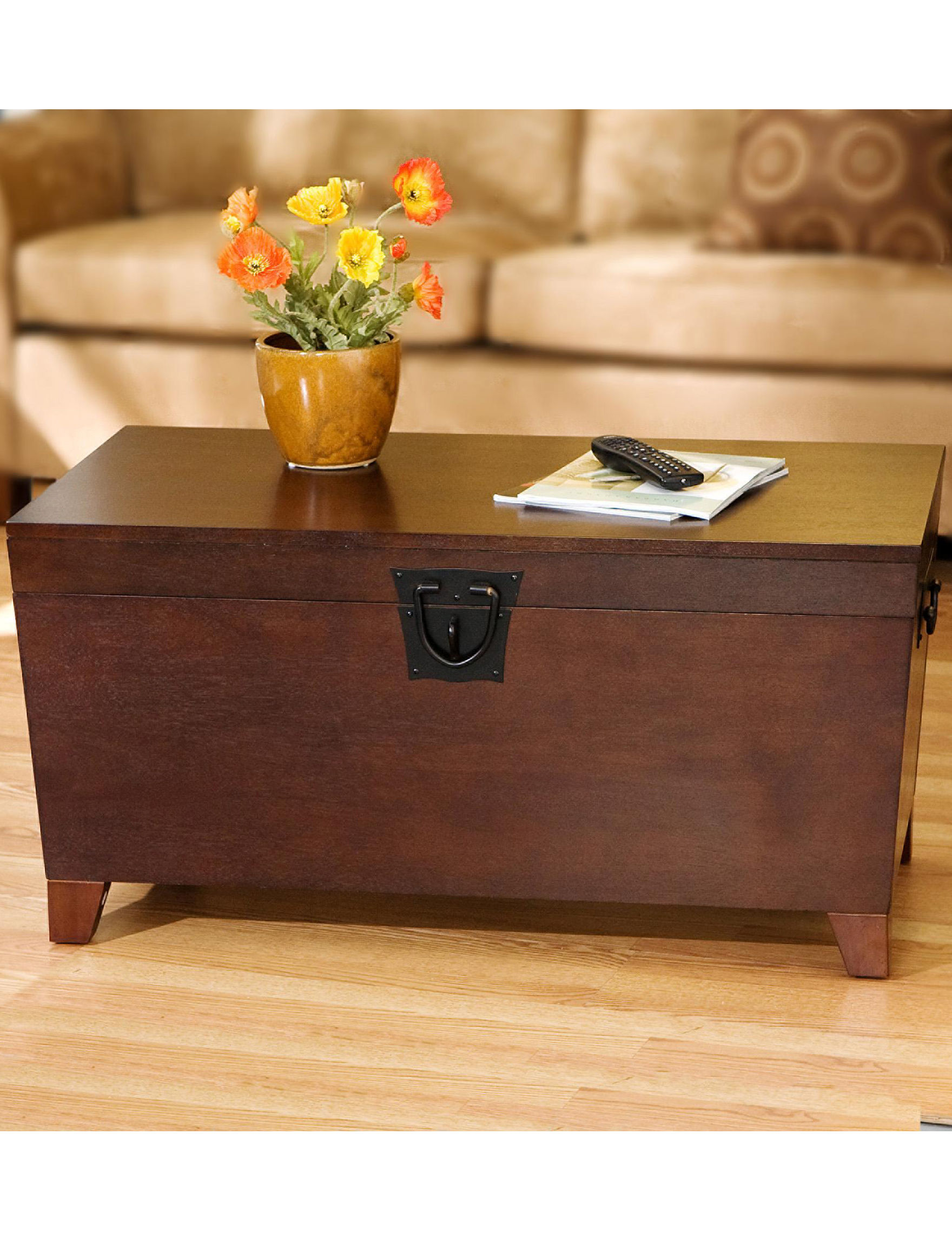 Southern Enterprises Pyramid Trunk Coffee Table Stage Stores