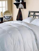 Blue Ridge Home Fashions Damask White Down Comforter