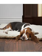 PAW Lavish Cushion Pillow Furry Pet Bed–Medium